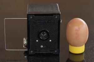 Camera plus egg